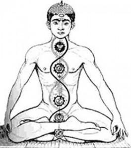 yoga-7-chakras