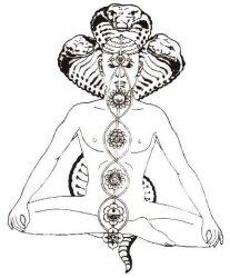 yoga-7-chakras2