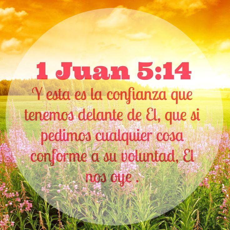 1-juan-5-14